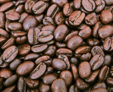choisir un bon café
